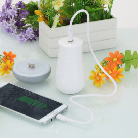VAKU ® 2 in 1 Mushroom Charging Power Bank ABS Body with Special LED Lamp mushroom head High Power 8,800 MAH Dual-USB Output Power Bank
